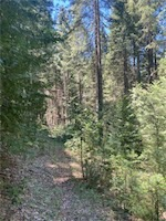 5011 Storybook Ct. Grizzly Flats, CA 95636